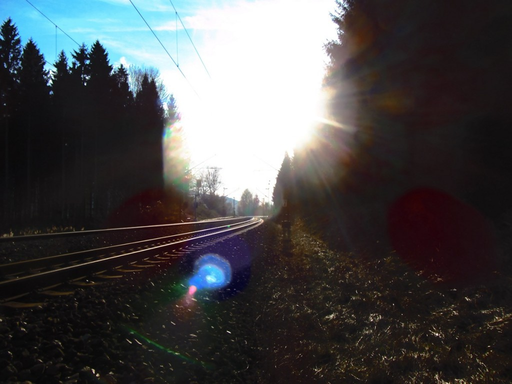 Gleise im Gegenlicht