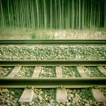 16h26min_Gleise und Bäume